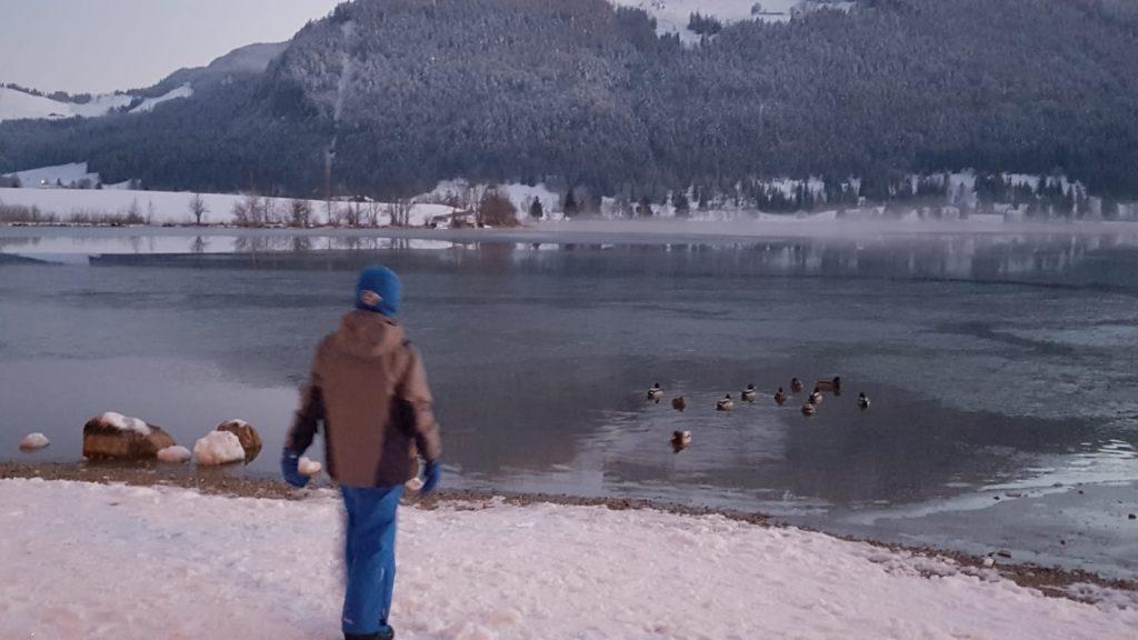 lacul-Walchsee